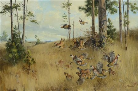 George Browne-Under the Pines - Quail